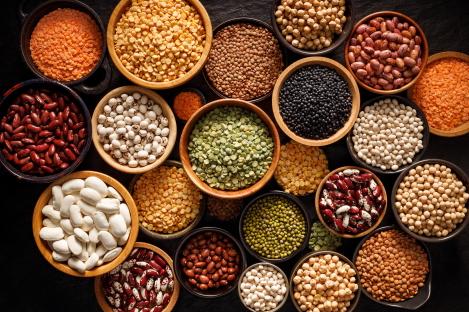 peulvruchten leveren veel eiwitten